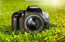 Мой первый зеркальный фотоаппарат Canon 650D