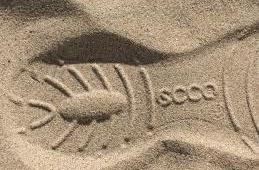 Моя неубиваемая обувь от Ecco