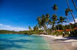 Кокосовые пальмы, белоснежный песок, ласковое море