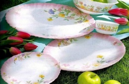 Мои любимые тарелки
