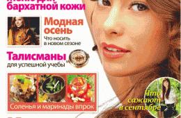 Недорогой и интересный журнал