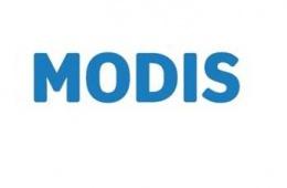 МODIS - магазин недорогой одежды