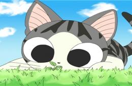 Моему ребенку очень нравится смотреть за проделками котенка в мультфильме милый дом Чи