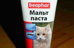 Отличный помощник в пищеварении для кошек