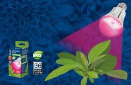 Экономичная досветка для растений