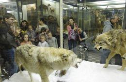 В Зоологическом музее Санкт-Петербурга