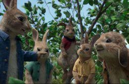 Кролик Питер на тропе войны