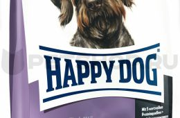 Отличная новинка от Happy Dog