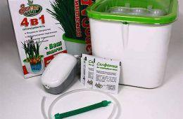 Пищевые проростки и микрозелень в домашних условиях круглый год