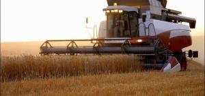 Как получить кредит для сельского хозяйства