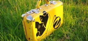 Как сделать чемодан для казантипа