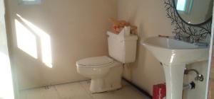Что делать, если нет канализации