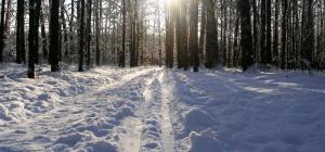 Что делать, чтобы не замерзнуть