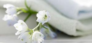 Как отбелить белую ткань