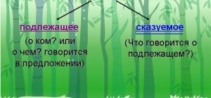 Что такое грамматическая основа