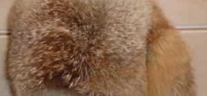 Как почистить мех лисы