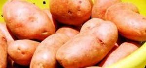 Как пожарить картошку с салом