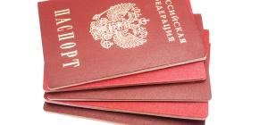 Как оформить гражданство
