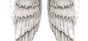 Как рисовать крылья ангелов