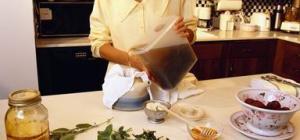Как приготовить чистотел