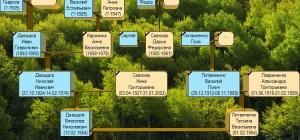 Как рисовать генеалогическое древо