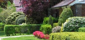 Как оформить садовый участок в собственность