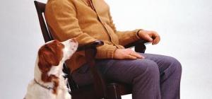 Как уволить работающего пенсионера