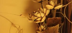 Как делать сухоцветы