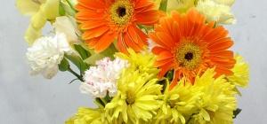 Как упаковать цветы в горшках