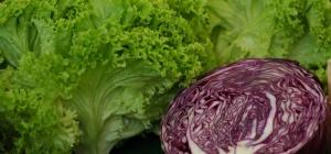 Как приготовить краснокочанную капусту