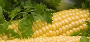 Как сделать кукурузную муку