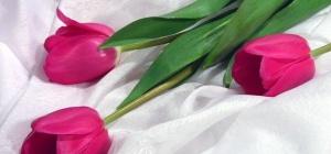 Как поздравить с 8 марта сестру