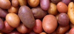 How to make potato juice