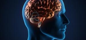 Как сохранить и улучшить память