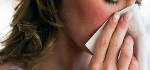 Как лечить аллергию на животных