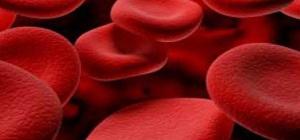 Как определить уровень гемоглобина в крови