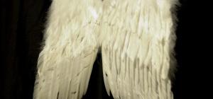 Как сшить крылья ангела