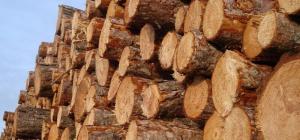 Как рассчитать объем дерева