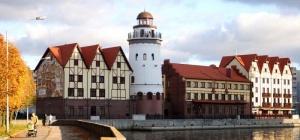 Куда сходить в Калининграде