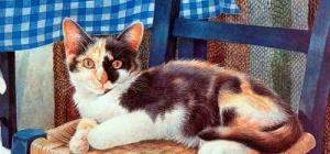 Как нарисовать кошку красками