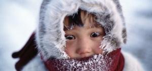 Как пережить морозы