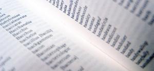 Как проверять слова с безударной гласной