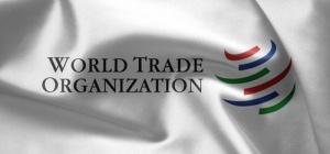 Чем грозит России вступление в ВТО