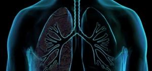 Профилактика и лечение эмфиземы легких