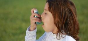 Причины и профилактика бронхиальной астмы