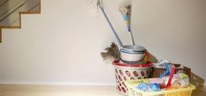 Как удалить неприятный запах от кошки