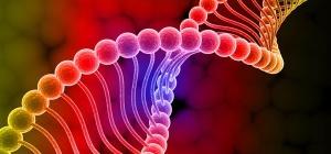 Где сделать генетический паспорт человека