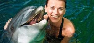 Где в Москве можно поплавать с дельфинами