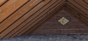 Чем засыпать потолок