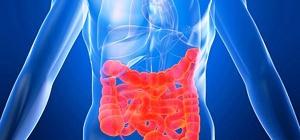 Чем опасна плохая работа кишечника